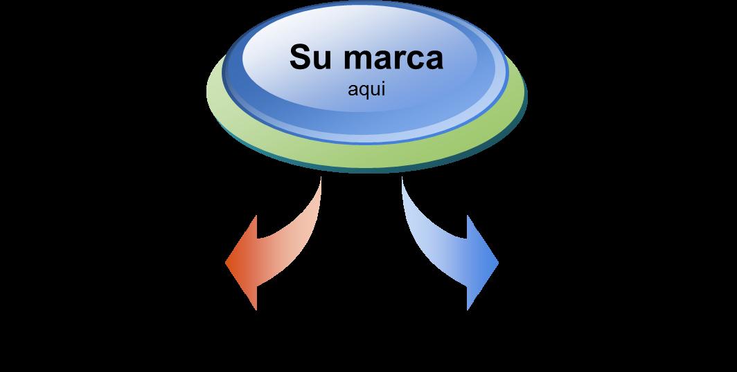 Objetivos Especificos Spin Off