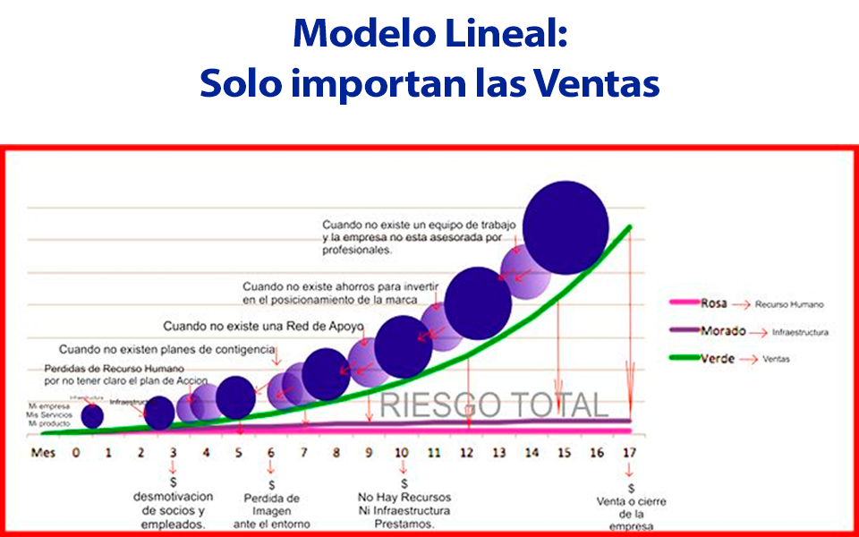 Modelo Lineal Spin Off Mentes Maestras